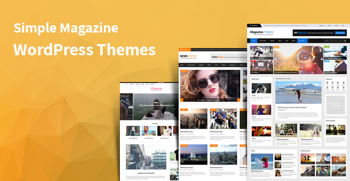 14 Simple Magazine WordPress Themes for New & Fashion Blogging